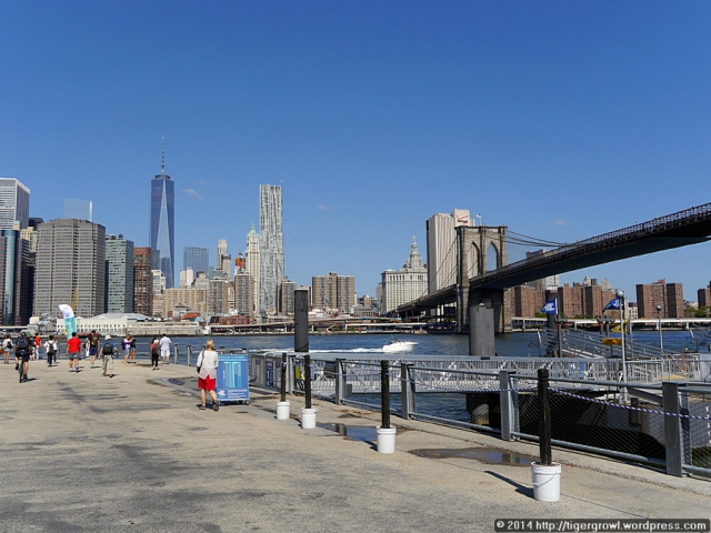 Pier 1, a NY Water Taxi stop